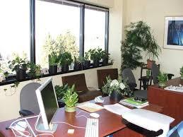 pisarna je lahko narava v malem
